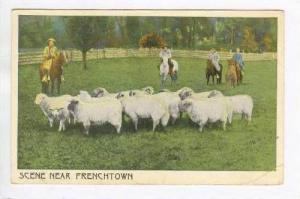 Men Shepherding The Sheep,Near Frenchtown,NJ,PU-1918