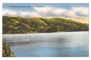TN Lake Watauga Eastern Tennessee Vintage Linen Postcard