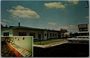 Knoxville, Tennessee Postcard WALDORF RESTAURANT Highway 25 Roadside Chrome