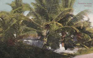 TRINIDAD, 1900-1910's; Peasants Home