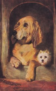 2 Dogs , Dignity & Impudence , 00-10s ; TUCK