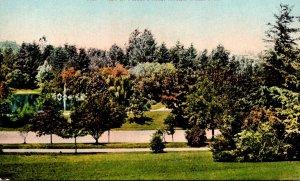 Washington Tacoma View In Wright's Park