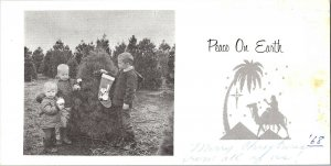 1968 Peace On Earth Vintage Christmas Photo Card 3 Children By Tree