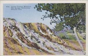 Wyoming Yellowstone National Park Jupiter Terrace Mammoth Hot Springs