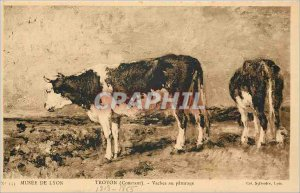 Old Postcard Troyoagen Constant Cow Patur