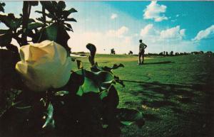 Walt Disney World Golf Club , Florida, 50-60s