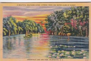 North Carolina Wilmington Cypress Trees & Water Lilies At Sunset Greenfield L...