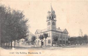 Ohio Postcard c1910 WAPAKONETA City Building AUGLAIZE COUNTY