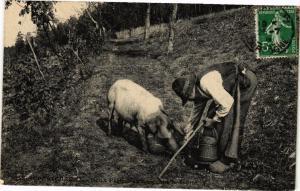 CPA PÉRIGUEUX-Deux PÉRIGORD trouvant de truffe (233915)