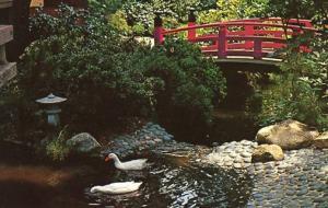 CA - La Canada, Descanso Gardens