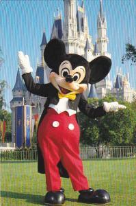 Mickey Mouse and Fairytale Castle Walt Disney World Orlando Florida