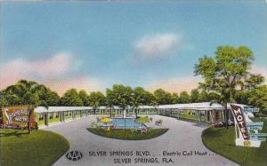 Florida Silver Springs Spring Side Motel