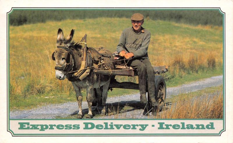 Large Format Postcard Donkey Express Delivery IRELAND 196x121mm A90