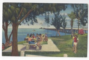 Clearwater Tampa FL Courtney Campbell Parkway Picnic 1954 Linen Postcard