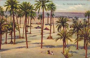 Palmiers dans les Dunes , 00-10s