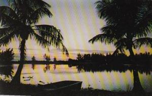 Florida Sunset On Tropical Captive From Sanibel Island