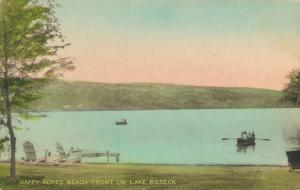 USA Happy Acres Beach Front On Lake Beseck 01.85