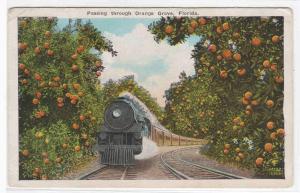 Railroad Train Orange Grove Florida 1920c postcard