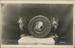 Kittens - Kitty Cats & Wood Carved Old Clock c1910 Real Photo Postcard #3