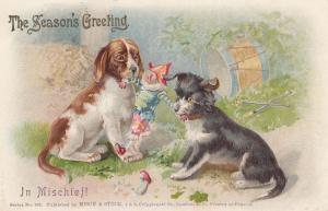 Dogs Fighting Over Toy Doll Antique Mischief Postcard