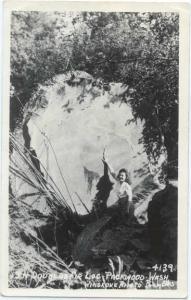 RP of Douglas Fir Log Packwood Washington WA Ellis # 4139