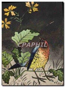 Old Postcard Bird