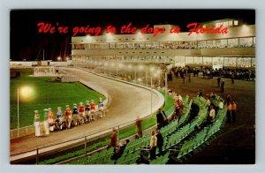 Dog Racing, Race Track, Chrome Florida Postcard