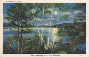Michigan Greetings From Bear Lake With Slivery Moonlight Curteich