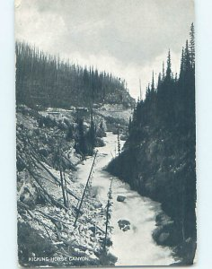 Divided-back NATURE Kicking Horse At Lake Louise - Near Banff Alberta AB AD5428