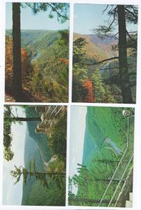 Pennsylvania Grand Canyon Tioga County PA (4 cards)