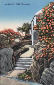 A Sketchy Path Bermuda