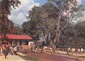 Shalimar Garden - Kashmir