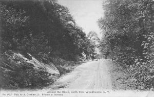Woodbourne New York~Horse & Buggy Head Downhill~A Guntlow, Jr c1910