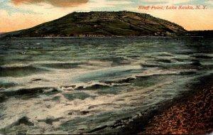 New York Lake Keuka Bluff Point