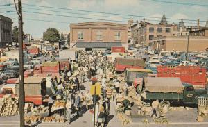 Kitchener Farmers Market Ontario Canada Canadian Postcard