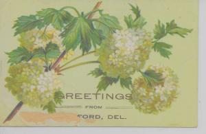 Seaford Delaware Greetings From white flowers embossed antique pc Z29925