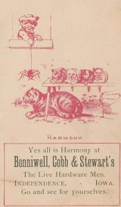 Independence IA Prankster w/Spider Over Cat~Bonniewell, Cobb & Stewart TC~c1889