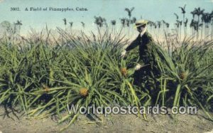 Field of Pineapples Republic of Cuba Unused