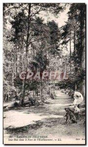 Old Postcard Bagnoles De L adorns Sous Bois In the Park of LL Establishment
