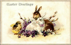 EASTER Greetings, Chick and RABBIT BUNNY - FLOWERS - PC - POSTCARD
