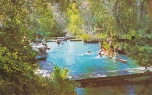 Alaska Liard Hot Springs Swimming Pool