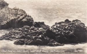 RP: Seal Rocks , SAN FRANCISCO, California, 1930-1940s ; ZAN 289