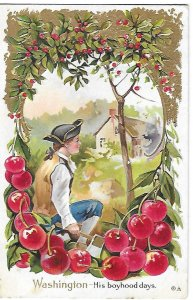 George Washington Chopping Down Cherry Tree Embossed Mailed 2-24-1911