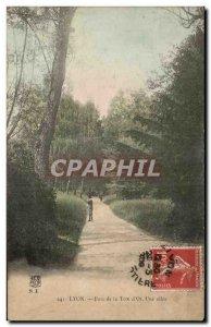 Old Postcard Lyon Tete Park d & # 39Or A Allee