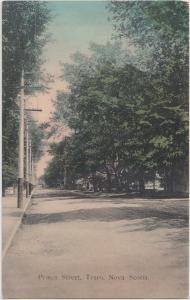 c1910 TRURO Nova Scotia Canada Postcard PRINCE STREET Homes Trees