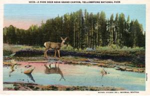 YELLOWSTONE NATIONAL PARK Haynes Linen Series 10138