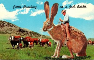 Humour Exageration Cattle Punching In The West On A Jack Rabbit