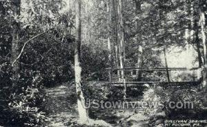 Sullivan Springs Mt Pocono PA Unused