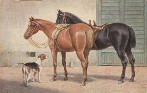 Two saddled horses and a dog, PU-1907