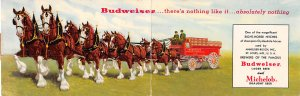 Brewery Post Card Clydesdales used by Budweiser, double folded card St. Louis...